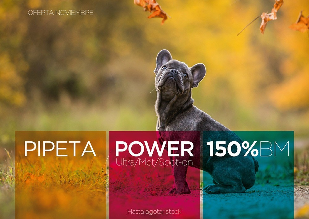 PROMO PIPETA POWER | 150% BM