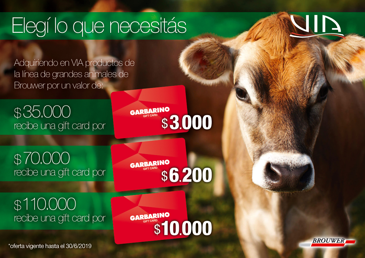 Promo grandes animales | Brouwer