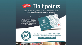 Hollipoints | Holliday